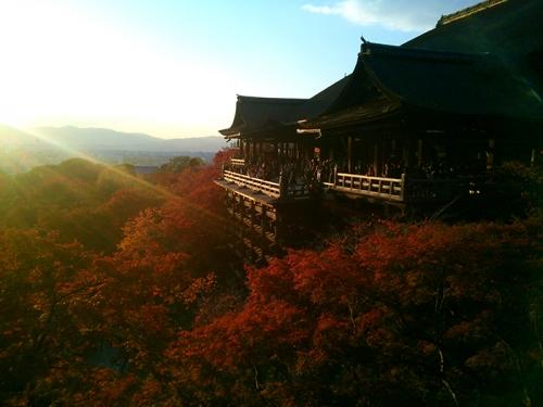 京都1日巴士旅游开始运营(岚山/金阁寺/清水寺)